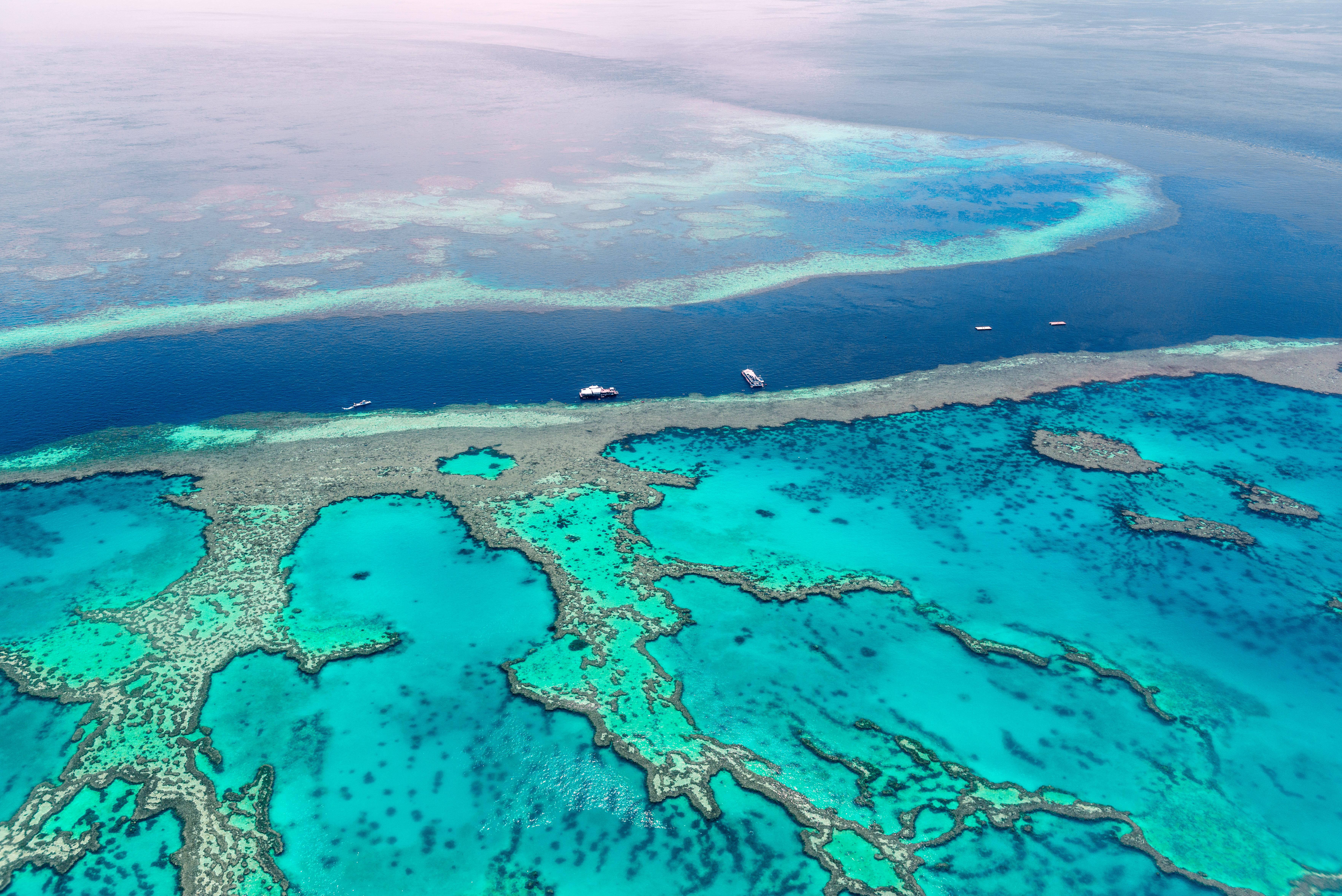 Great Barrier Reef - 1